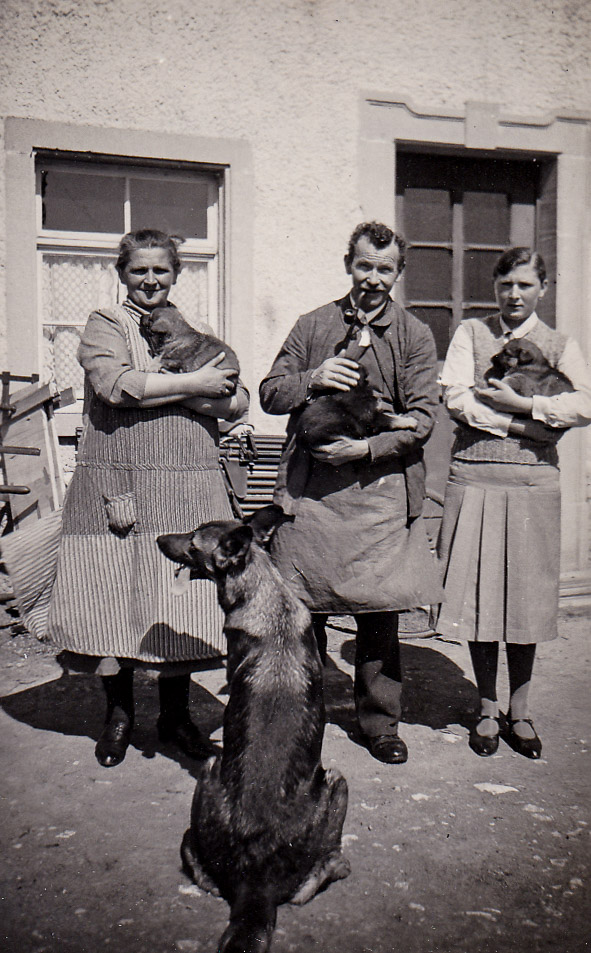 Familie Limb mit Hundenachwuchs, 1936